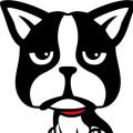 比特猎犬_BTCDOG